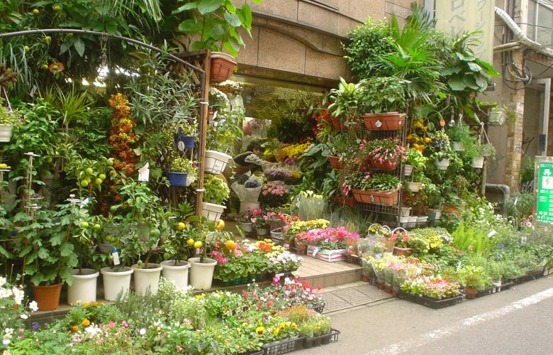 Where to get gardening supplies in Tokyo | REthink Tokyo